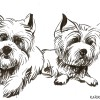 dogs caricature
